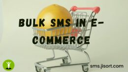 Bulk SMS in e-Commerce: 6 ways to grow your business