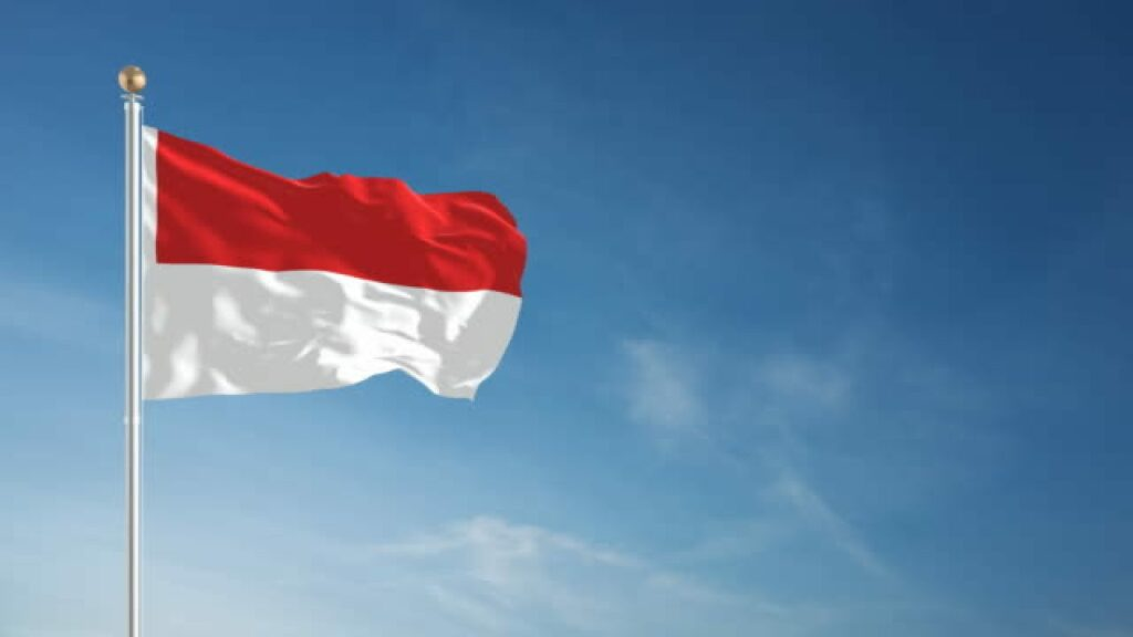 Mambu Indonesia: What You Need To Know